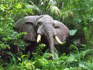 An elephant hiding in the lush, green foliage along the Amazon River.